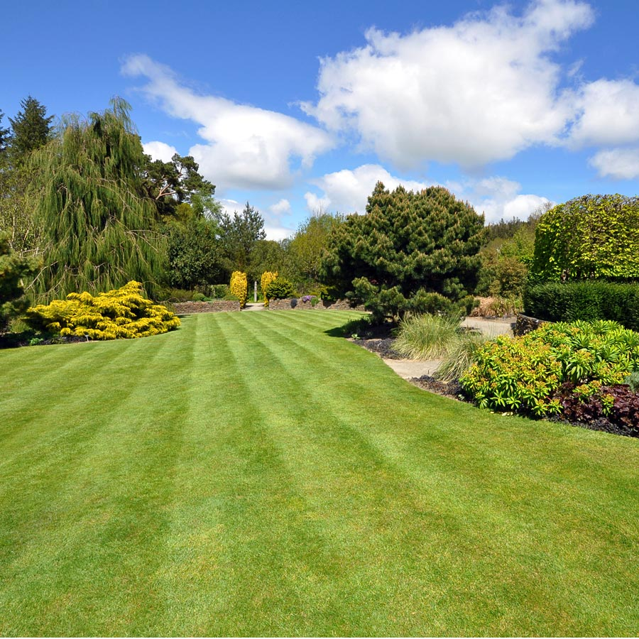 GSS-Home-Page-Lawn