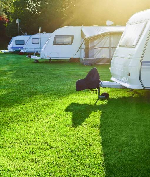 Grass Seeds For Campsite, Car Park & Caravan Site Use