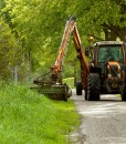Grass Seed For Banks & Roadside Verge