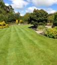 Amenity Hardwearing Lawn Seed