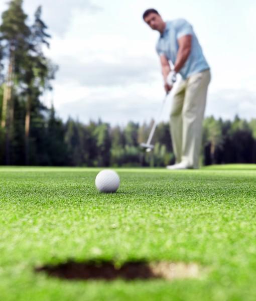 Golf Green Grass Seed