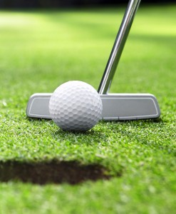 Pitch & Putting Green Grass Seed Suppliers