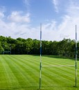 Rugby Field Grass Seed Supplier