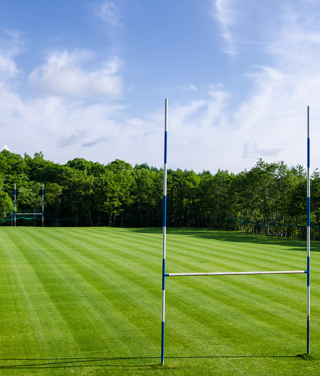 Amenity Grass To Seed Or Repair A Rugby Field