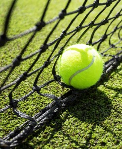 Tennis Court Grass Seed